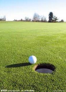 二手高爾夫球
